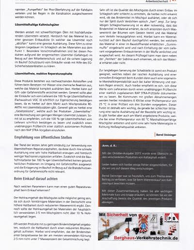 Sachverständigen Interview 2016 STEININGER Im Fachmagazin DER BAUHOFSLEITER 4