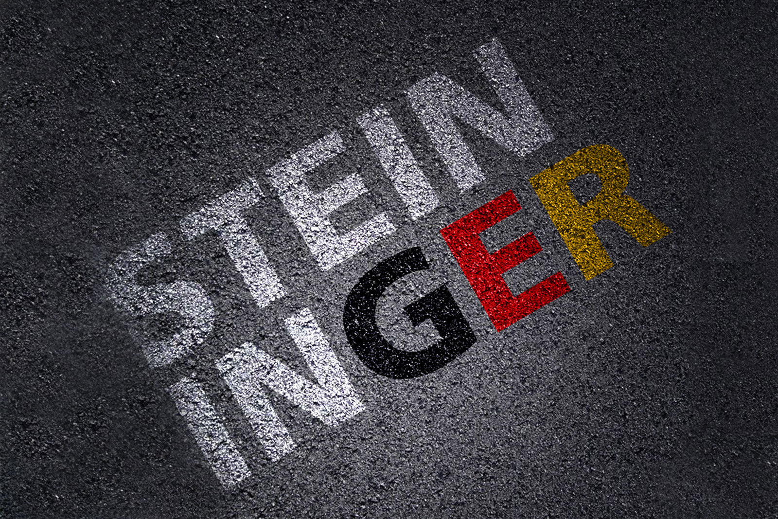 Steininger Schriftzug Germany